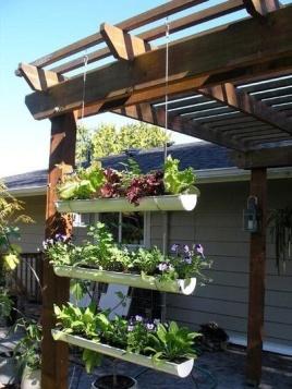 A Gutter-Garden