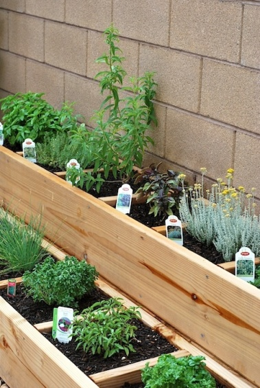 Raised beds for herbs,go vertical and save space.