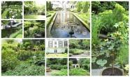 adam canal gardens