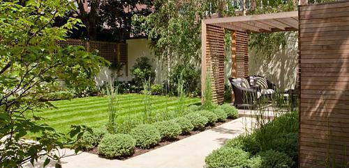City garden design florafocus for City garden designs