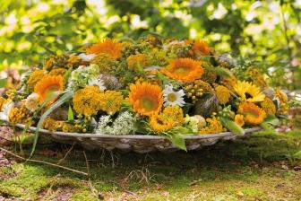 Sunflowers ( Helianthus ) in a sunny arrangement.
