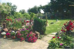 Runner+up+Back+garden++Lynn+Lewis