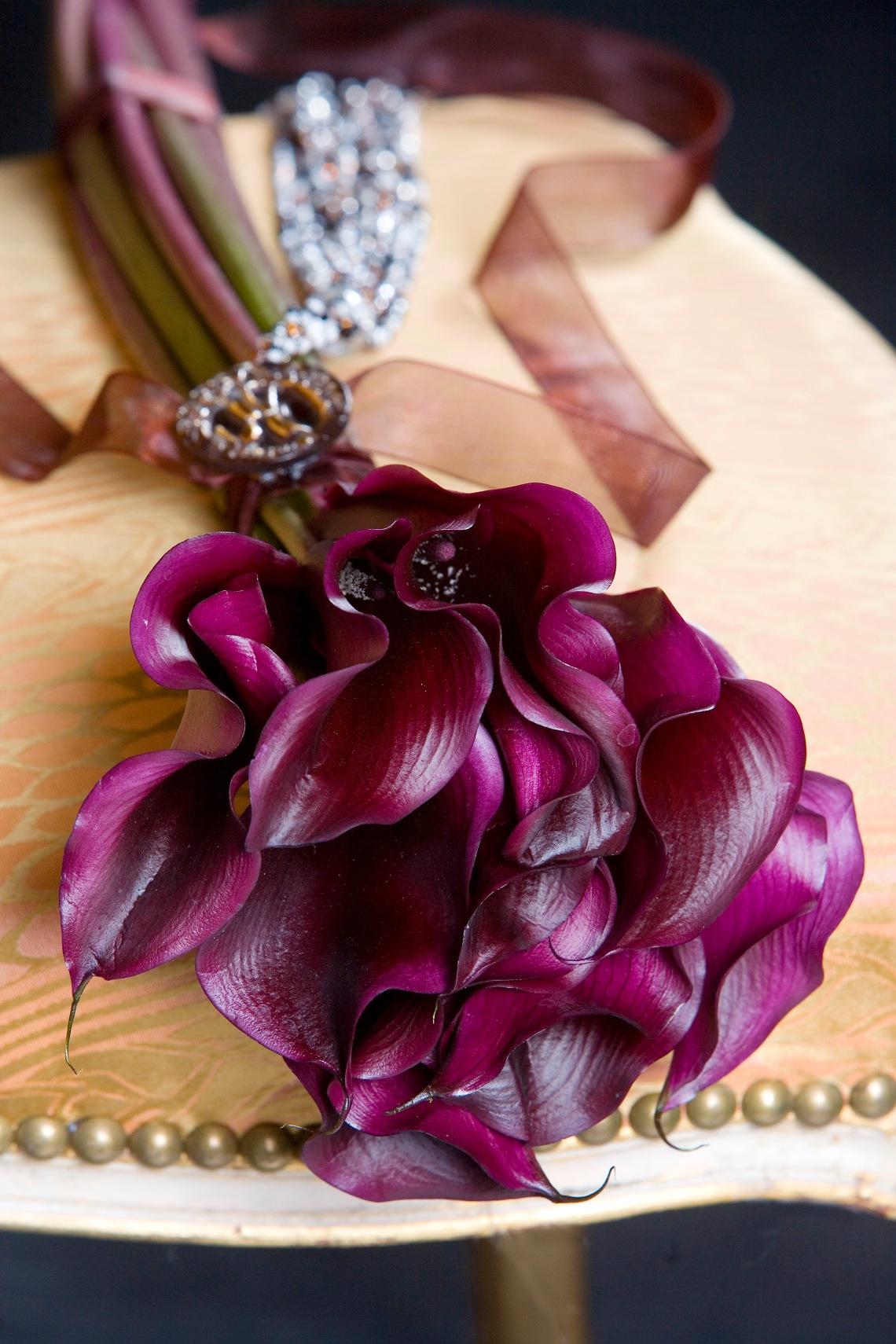 Zantedeschia - Calla lillies