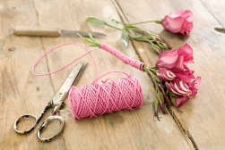 Attach the rope around the stem, the stem will be the base of this tiny-arrangement. ensure that the rope is properly secured