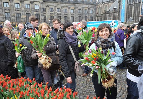 Happy Tulip-lovers