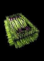Steel-grass and Calla ( Zantedeschia )