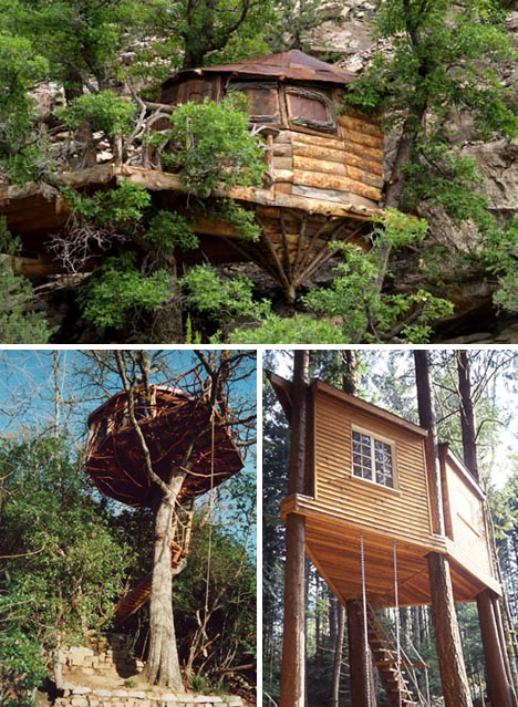 forest-organic-tree-houses