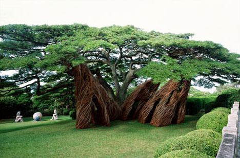 natural-shaped-arbosculpture1