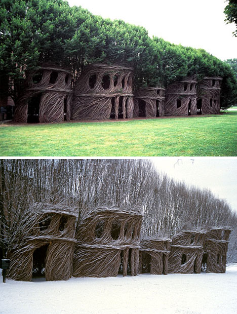 natural-shaped-tree-houses