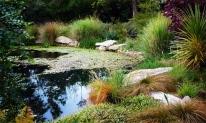 romantic-garden-design-eckersley-4