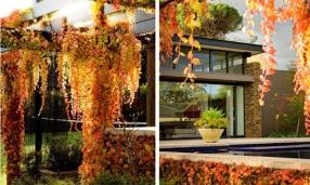 romantic-garden-design-eckersley-9