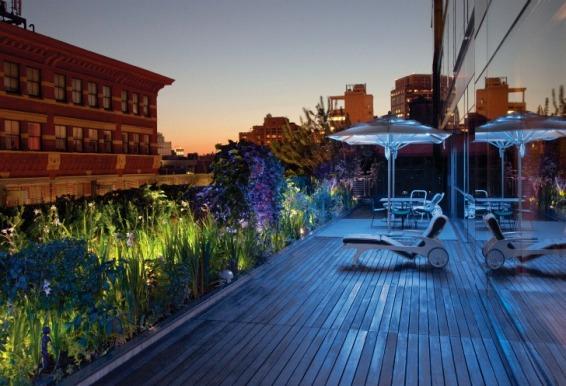 Rooftop-Gardens-book-night