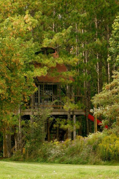tree-house-3