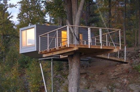 A Modern Tree-house
