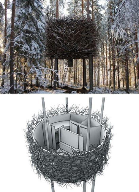 The Bird-nest design
