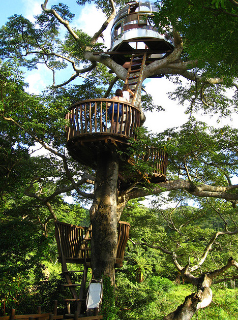 treehouse-scary-height-construction