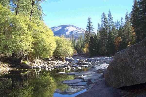 Yosemite National Park 4