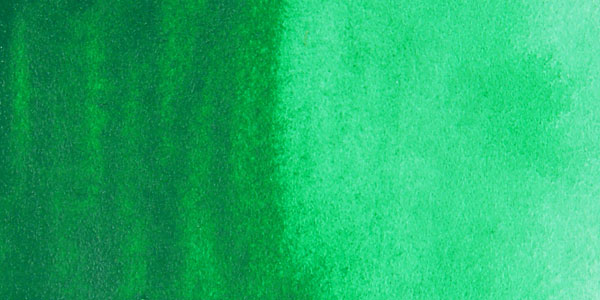 Different shades of emerald green.