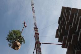 bosco-verticale-marco-garofalo-21