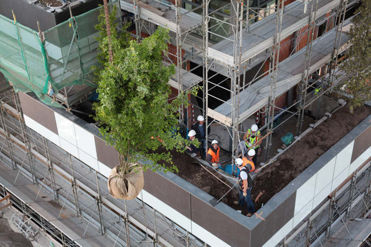 Bosco verticale world s first vertical forest completed - Bosco verticale ...