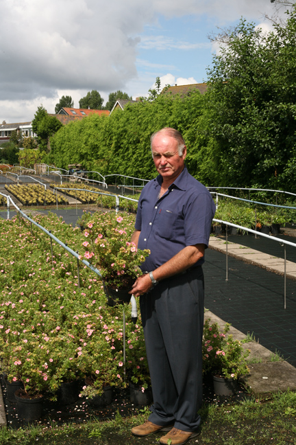 Grower H.J.M. Kuijf ,Boskoop The Netherlands with his new Potentilla Happy Face Pink