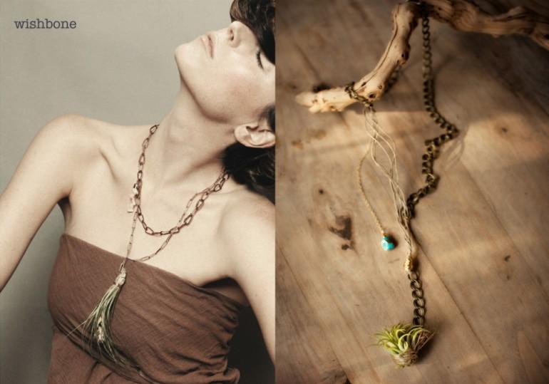 Viola_living_jewels-_1