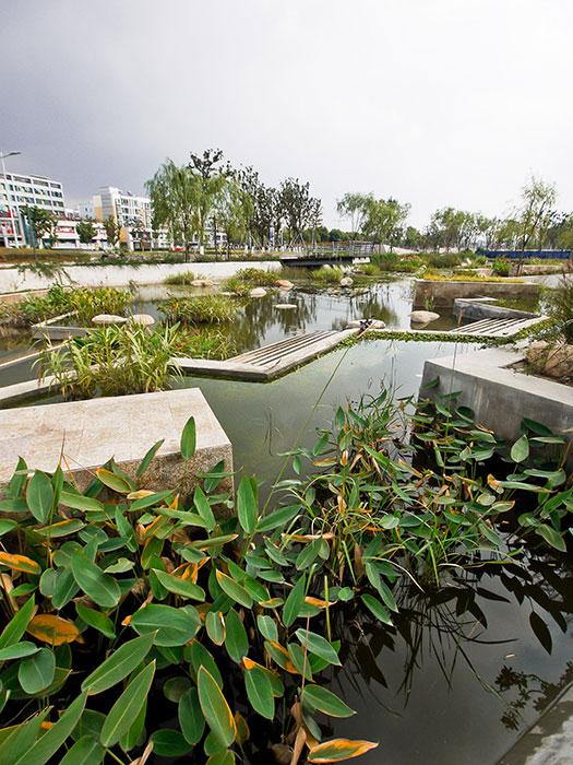 Lotus-Lake-Park_IPD_Kunshan_05