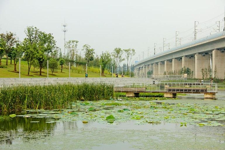 Lotus-Lake-Park_IPD_Kunshan_08