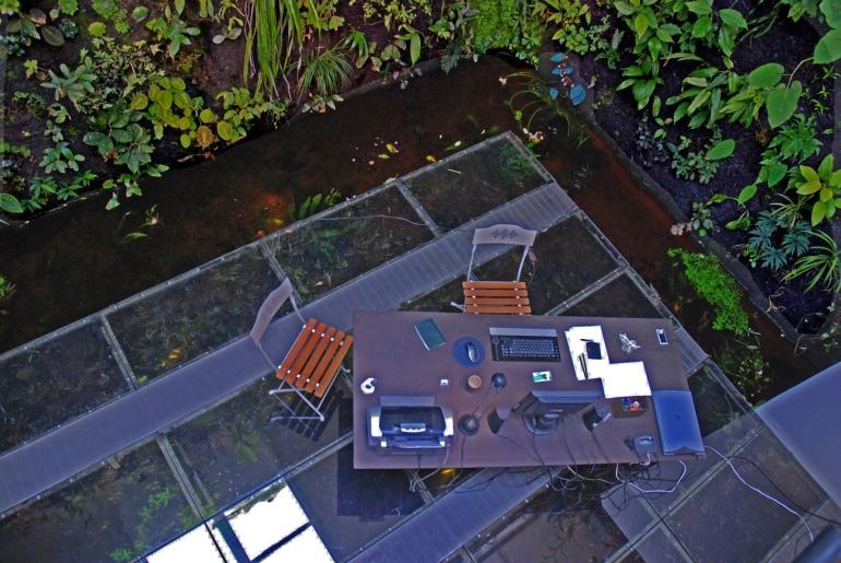 Patrick-Blanc-Interior-Patrick-Blanc-Interior-aquarium-floored-workspace-aerial-view