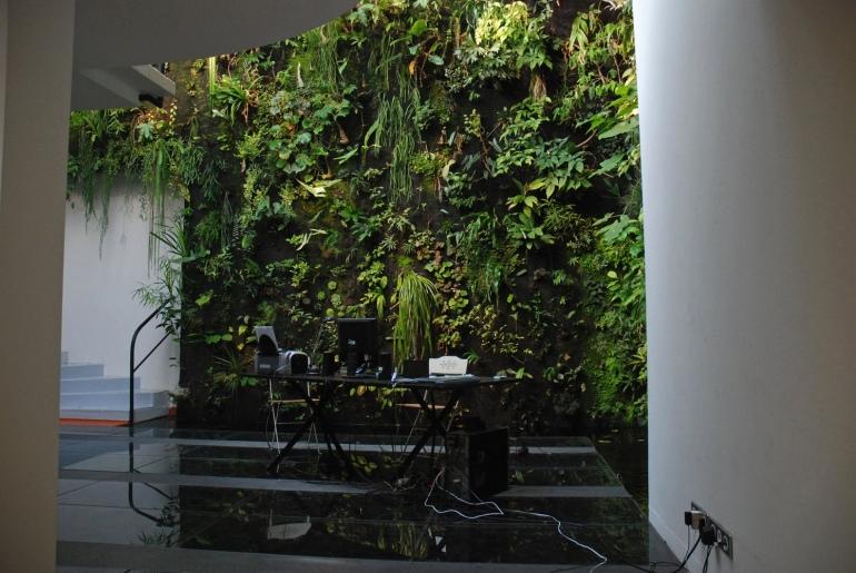 Patrick-Blanc-Interior-vertical-garden-workspace