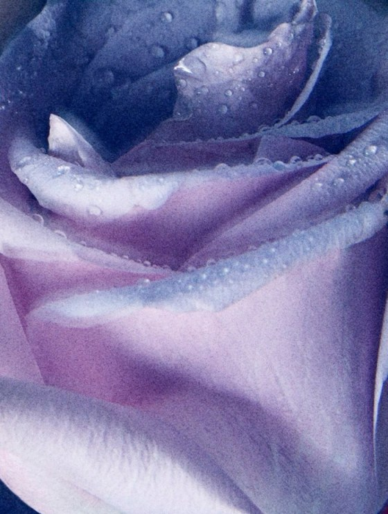 Dior-Fahsiontography-Akrans-07